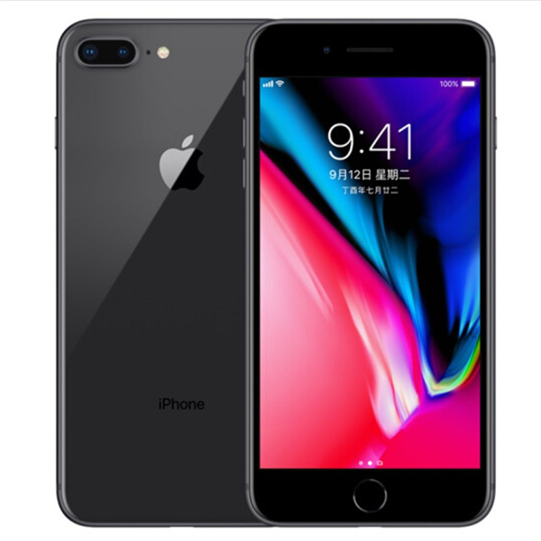 Apple iPhone 8 - 2GB RAM 64GB ROM 12MP - Gray (Ricondizionato)