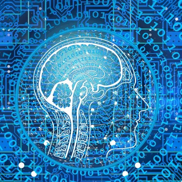 Numeri intelligenti. La matematica che fa funzionare l'intelligenza artificiale di Google, Facebook, Apple & Co.