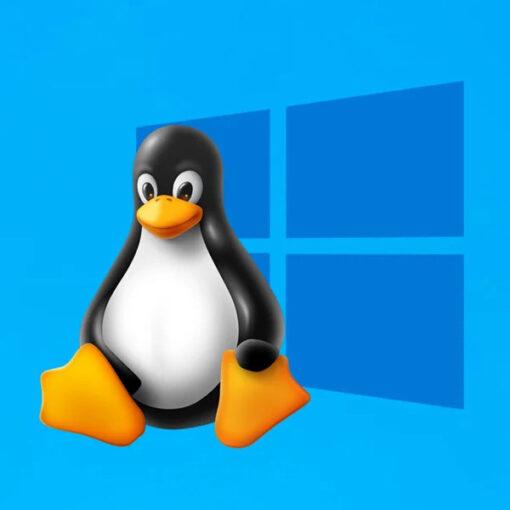 Windows perderà la guerra dei desktop contro Linux?